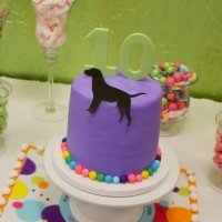 10th Artsplash Puppy Party!