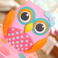 It\'s a HOOT Owl Party